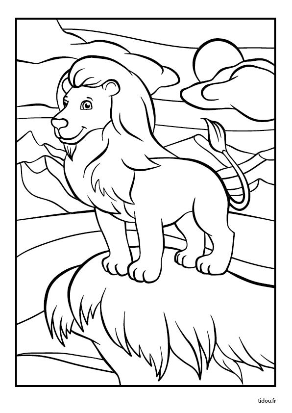 Coloriage Lion Tidou Fr