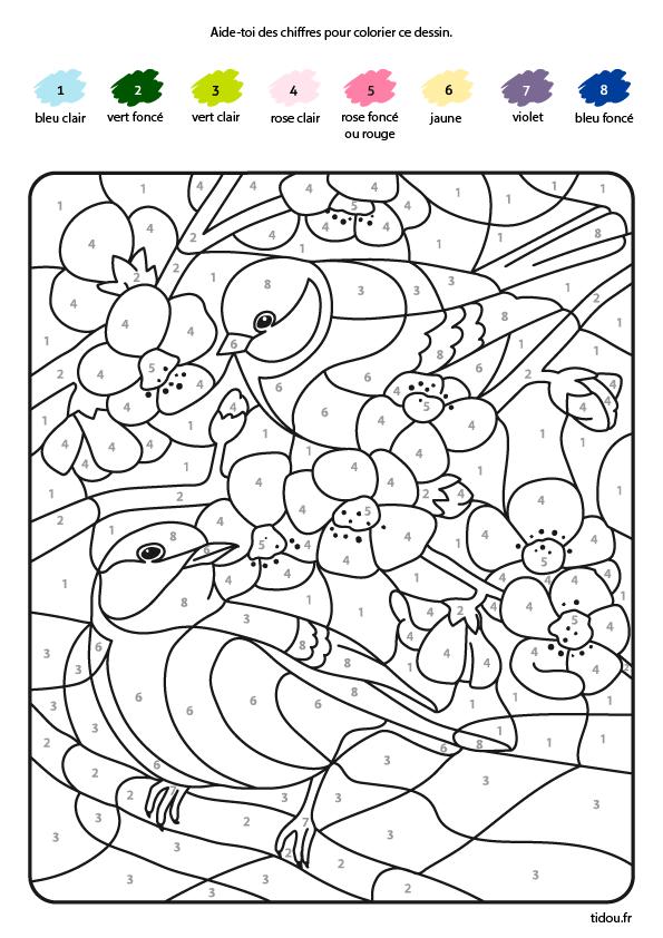 Coloriage magique, les oiseaux - tidou.fr