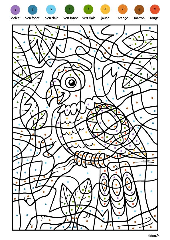 Coloriage magique, les couleurs - un perroquet - tidou.fr