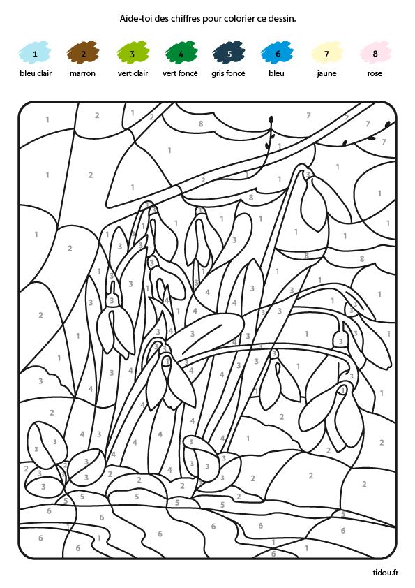 Coloriage Magique A Imprimer Tidou Fr
